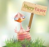 被孵化的复活节小鸡 库存图片