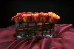 被安排的美丽的现代玫瑰花瓶 免版税图库摄影