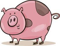 被察觉的动物农场猪 库存照片