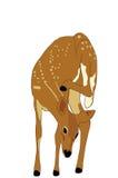 被察觉的小鹿例证 图库摄影