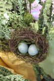 被察觉的鸟怂恿巢春天或复活节装饰与黄色缎和豪华的绿色植物 库存图片
