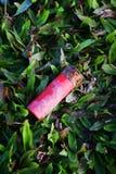 被射击的壳倒空红色射击枪项目符号弹药筒 库存照片