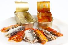被开张的鱼罐头 免版税图库摄影