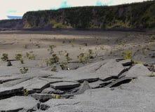被弄皱的火山岩石 库存图片