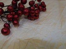 被弄皱的纸背景和莓果一个红色分支  免版税库存照片