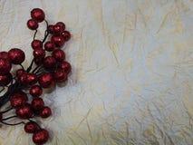 被弄皱的轻的纸红色莓果背景和分支  免版税库存照片
