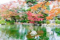 被弄脏的五颜六色与反射的秋叶在池塘 免版税库存照片