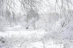 被弄脏的冬天风景 库存图片