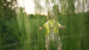 被弄脏的录影,婴孩是单独的在路通过草、孩子和自然 股票视频