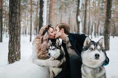 被弄脏的新婚佳偶在西伯利亚爱斯基摩人背景亲吻  户外婚姻冬天的新娘新郎 附庸风雅 免版税图库摄影