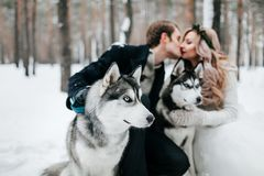 被弄脏的新婚佳偶在syberian爱斯基摩背景亲吻  户外婚姻冬天的新娘新郎 附庸风雅 免版税库存图片