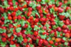 被弄脏的未聚焦的草莓无缝的纹理  库存照片