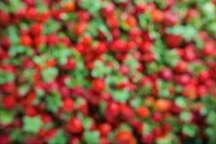 被弄脏的未聚焦的草莓无缝的纹理  免版税库存图片