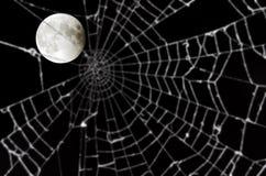 被弄脏的满月蜘蛛网 免版税图库摄影