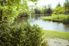 被弄脏的灌木和湖5月 免版税图库摄影