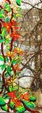 被弄脏的玻璃绘画 免版税库存图片