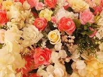 被弄脏的美丽的葡萄酒玫瑰 库存照片