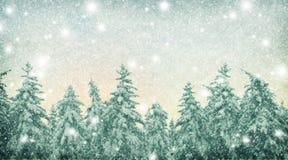 被弄脏的自然本底 在森林降雪的冬天 运载圣诞节克劳斯礼品例证晚上圣诞老人向量 免版税库存图片