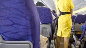 被弄脏的飞行的乘务员,空中小姐 库存图片