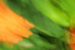 被弄脏的轻的花-背景秀丽 免版税库存照片