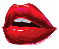被张开的红色嘴唇 免版税图库摄影