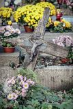 被忘记的坟墓 库存照片