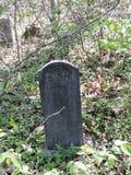被忘记的坟墓 库存图片