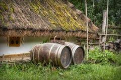被恢复的农舍和庭院在乌克兰 免版税库存照片