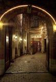 被成拱形的入口 库存照片