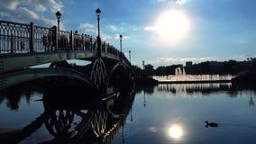 被成拱形的公园桥梁、走的人民和浮动鸭子剪影  免版税图库摄影