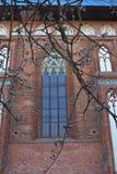 被成拱形的大教堂kant s视窗 免版税库存图片