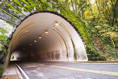 被成拱形的隧道通过岩石在秋天森林里 免版税库存照片