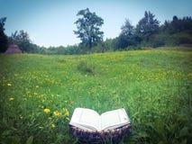 被打开的书在草甸 免版税图库摄影