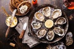被打开的牡蛎用黑面包用黄油 免版税图库摄影