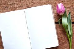 被打开的笔记本和紫罗兰色郁金香空间想法的 图库摄影
