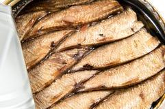 被打开的金属能与被保存的沙丁鱼鱼 免版税库存图片