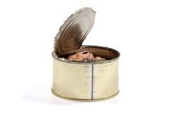 被打开的金属能与被保存的沙丁鱼鱼 库存照片