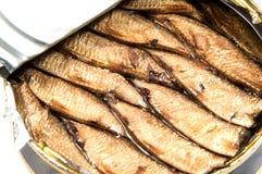 被打开的金属能与被保存的沙丁鱼鱼 图库摄影