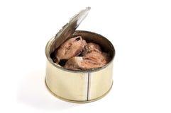 被打开的金属能与被保存的沙丁鱼鱼 免版税图库摄影
