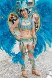 被打扮的闹饮者前进与在每年梦想游行o的浮游物 库存图片