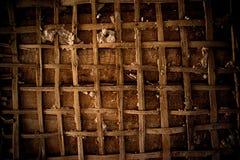 被打碎的墙壁,膏药木瓦 免版税图库摄影