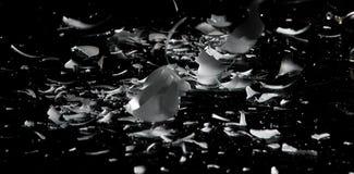 被打碎的电灯泡光 库存图片