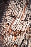 被打碎的老木头的细节 库存图片