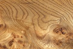 被打结的粒状木纹理 图库摄影