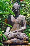 被抛弃的菩萨的一个古老雕象赤道密林的丛林的 免版税图库摄影