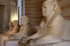 被挖掘的狮身人面象的印象深刻的收藏在埃及展览,天窗,巴黎,法国的, 2016年 库存照片