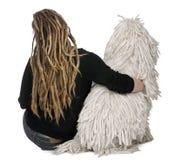 被捆绑的女孩长卷毛狗背面图白色 图库摄影