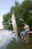 被捉住的鱼 免版税库存照片