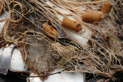 被捉住的flesus比目鱼新鲜的platichthys 免版税库存图片