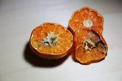 被损坏的桔子 库存图片